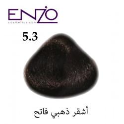 ENZO HAIR COLOR 5.3
