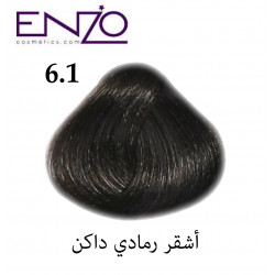 ENZO HAIR COLOR 6.1