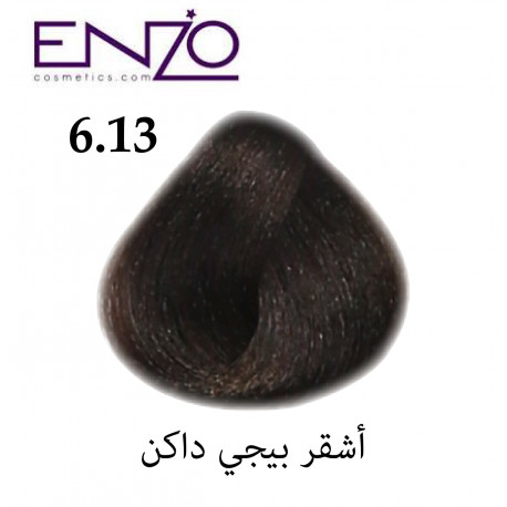 ENZO HAIR COLOR 6.13