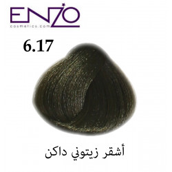ENZO HAIR COLOR 6.17