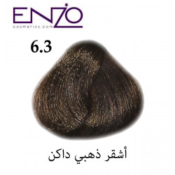 ENZO HAIR COLOR 6.3