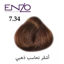 ENZO HAIR COLOR 7.34