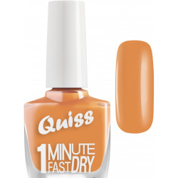 Quiss, 1Minute Fast Dry №17, 10ml